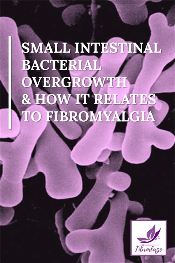 Small Intestinal Bacterial Overgrowth & How It Relates To Fibromyalgia