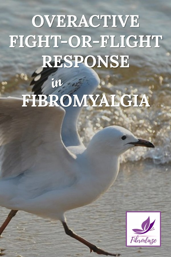 Fight or Flight Response Overactive In Fibromyalgia