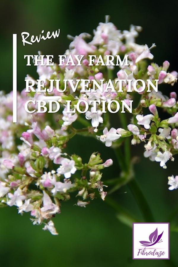 The Fay Farm Rejuvenation Lotion Review